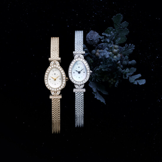 【agete】2021 限定 予約受付開始˚✧₊⁎⁺˳時計コレクション