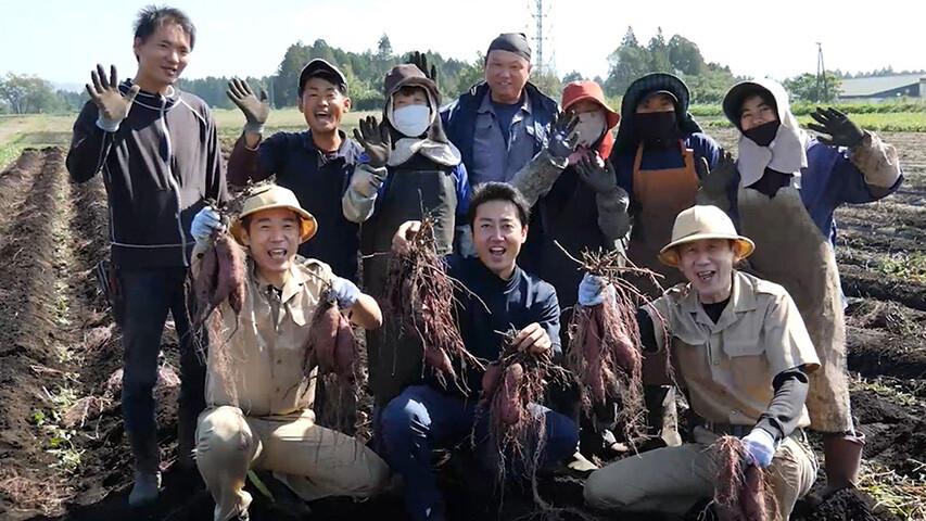 日本一甘いサツマイモ「べにはるか」のふるさとを訪ねて