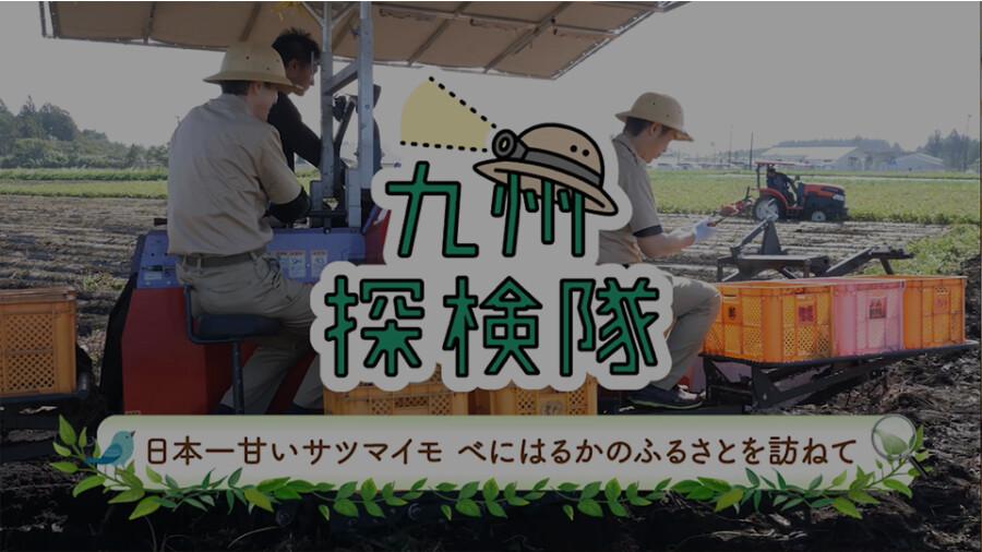 「九州探検隊 日本一甘いサツマイモ『べにはるか』のふるさとをたずねて」篇
