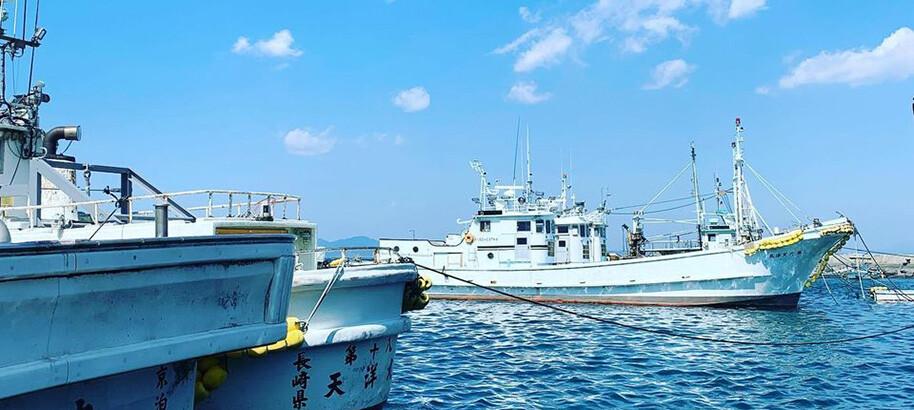 国内屈指のいりこの産地、長崎。「天然のいけす」雲仙市橘湾を探検